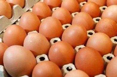Bayat Yumurta Yenir mi?