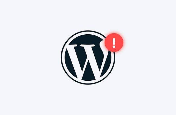 wordpress hata kodları
